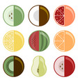 fruit collection set of nine different species vector image