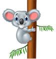 happy koala in tree vector image vector image