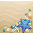 shells and starfish vector image vector image