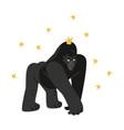 a huge gorilla standing in menacing pose vector image