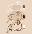 hand drawn abstract lying persian vector image