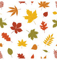 natural seamless pattern with autumn fallen leaves vector image vector image