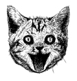 Smiling cat 02 vector image vector image