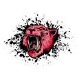 tiger eyes mascot graphic vector image