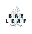 bay leaf logo original design aromatic culinary vector image