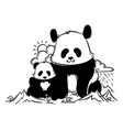 big and small panda in the mountains vector image