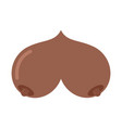bosom african american isolated boobs on white vector image vector image