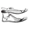 egyptian sandal vintage engraving vector image vector image