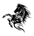 Horse tattoo symbol new year for design isolated v
