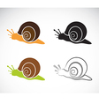 image of an snail vector image