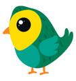 little green bird on white background vector image vector image