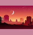 night in mexican desert vector image vector image