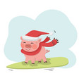 pig ride on surfboard with santa hat and red scarf vector image vector image