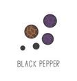 black pepper line cooking vector image
