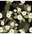 blooming magnolia vector image