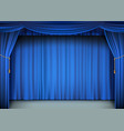 blue cinema curtain with the stage vector image