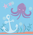 cute octopus with starfish and anchor vector image vector image