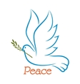 Dove of peace with olive branch vector image vector image