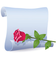 folded parchment vector image vector image