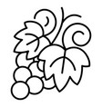 grapes icon outline style vector image vector image