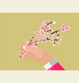 hand holding colorful branch of cherry blossoms vector image vector image