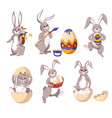 easter bunny or rabbit with eggs and flowers vector image vector image