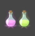 magic bottles with pink and green drinks vector image vector image