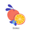 orange fruit flat vector image vector image