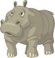 rhino cartoon vector image vector image