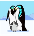 pinguin family in flat style vector image