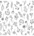 line art floral elements seamless pattern vector image
