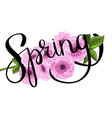 sakura ink spring lettering vector image vector image