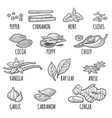 set of spices mortar and pestle vintage vector image vector image