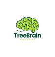 tree brain leaf smart idea think logo icon vector image vector image