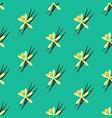 vanilla flower seamless pattern vector image vector image