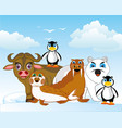 arctic animals of the north on background of the vector image