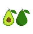 avocado fruit icon vector image vector image