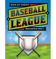 Baseball League Flyer vector image vector image