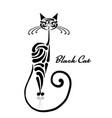 black cat design vector image vector image