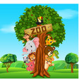 collection of zoo animals with guide vector image vector image