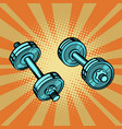 dumbbell pop art vector image
