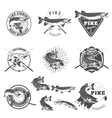 Pike fishing labels vector image vector image