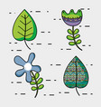 set rustic flowers and leaf decoration design vector image vector image