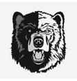 Bear head cartoon vector image