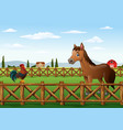 cute cartoon rooster and horse in the farm vector image
