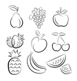 fruit silhouettes vector image vector image