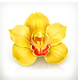 Orchid flower icon vector image vector image