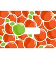 ripe apples vector image vector image