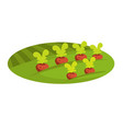ripe beet on green field of rural farmland vector image vector image