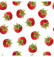 ripe raspberry background vector image